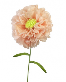 Dekoration blomma